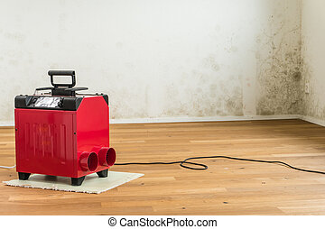 red dehumidifier and mildew in an apartment room