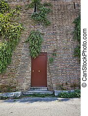 A red door in old wall with plants