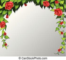 A red rose frame