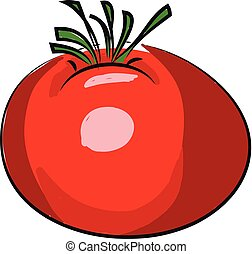A red tomato, vector color illustration.