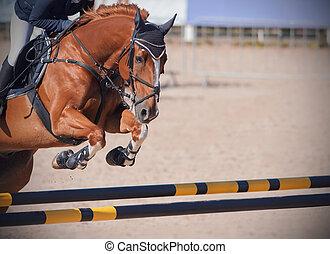 A redhead horse jumps a high yellow-black barrier