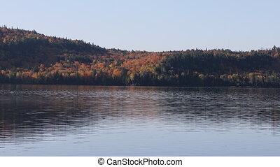 Reflection of autumn foliage at Algonquin - A Reflection of...