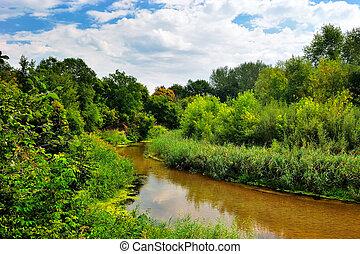 a, rio, ligado, um, dia ensolarado