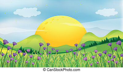 Illustration of a rising sun