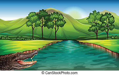 A river with an alligator