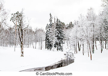A river with ducks in winter Park