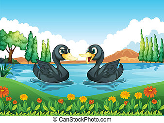 A river with two ducks