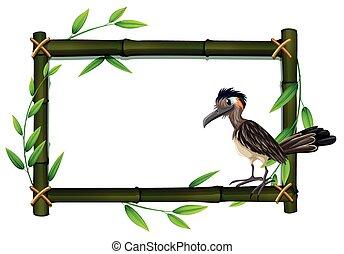 A roadrunner on bamboo frame