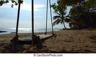 A Rope Swing Hangs From a Palm Tree Right on the Sand Beach at Warm Tropical Sea Cost.