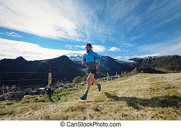 A runner trains on mountain meadows