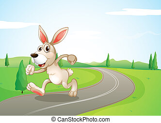 A running rabbit at the road