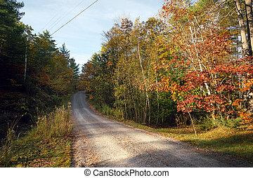 A rural gravel road through autumn trees