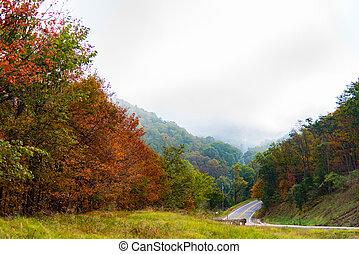 A rural road in Virginia