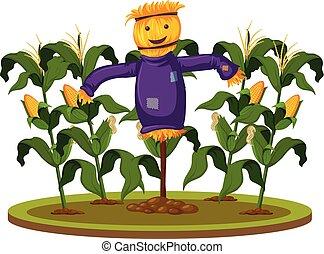 A scarecrow at corn farm