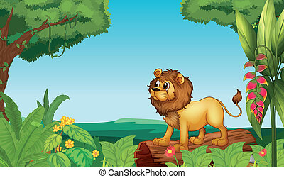 A scary lion in the jungle