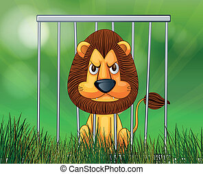 A scary lion inside the cage