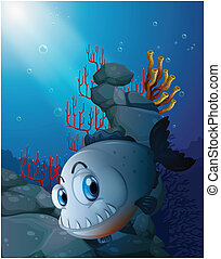 A scary piranha near the rocks