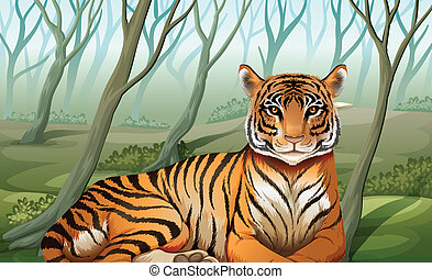 A scary tiger at the forest