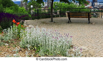 Scene of Hamilton, Canada, city center with flowers in foreground