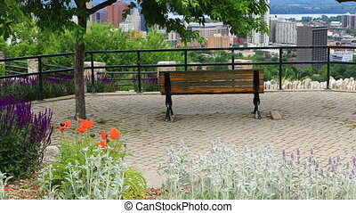 Scene of Hamilton, Canada, skyline with flowers in foreground