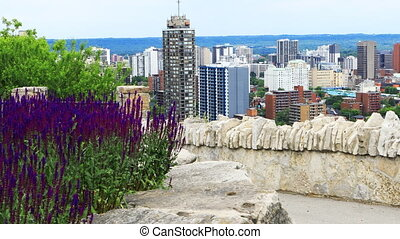 Scene of Hamilton, Canada, skyline with flowers in front