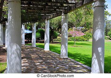 A Scenic Arbor in Presidio Park, San Diego