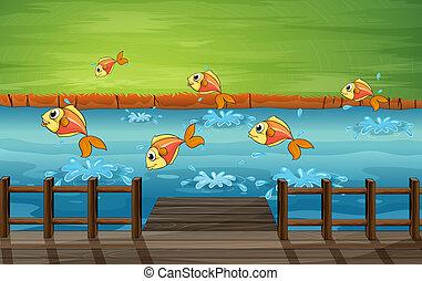 A school of fish  - Illustration of a school of fish
