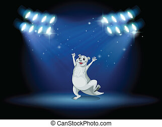 A sealion at the stage with spotlights