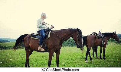 A senior couple getting ready for riding horses on a meadow....