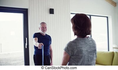 A senior couple indoors at home, doing exercise indoors....