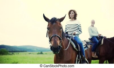 A senior couple riding horses in nature. - A happy senior...