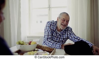 A senior couple sitting at the table at home feeding pet dog...