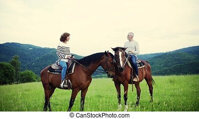 A senior couple sitting on horses on a meadow, talking. - A...