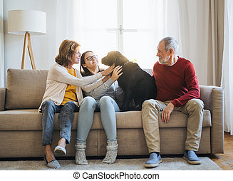 A senior couple with a teenage girl sitting on a sofa with dog at home.
