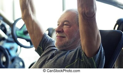 A senior man doing strength workout exercise in gym. - A...