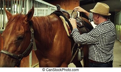 A senior man putting a saddle on a horse in a stable. - A...
