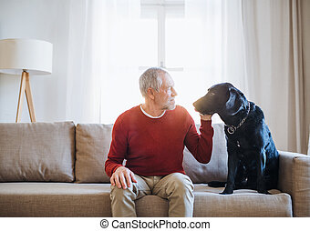 A senior man sitting on a sofa indoors with a pet dog at home.