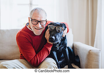 A senior man sitting on a sofa indoors with a pet dog at home, having fun.