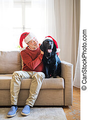 A senior man sitting on a sofa indoors with a pet dog at home, wearing santa hats.