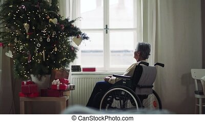 A senior woman in wheelchair at home at Christmas time. - A...