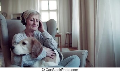 A senior woman with headphones and dog sitting indoors at...