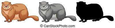 A set of beaver