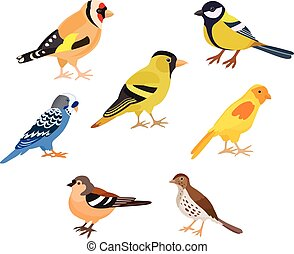 A set of birds, isolated vector illustration