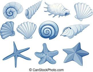 A Set of Blue Seashell