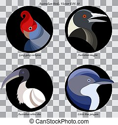A set of colored abstract australian birds for logo