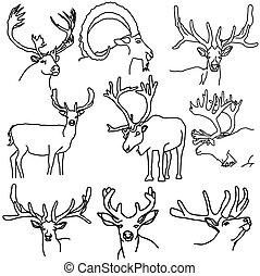 A set of deer, elk, and goats, vector illustration.