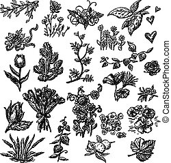 A set of different floral doodles