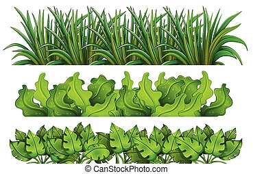 A set of green grass