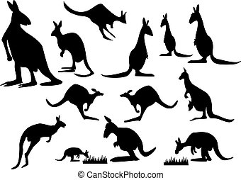 kangaroo silhouette - a set of kangaroo silhouette on white...