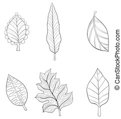 A set of  leaves for relaxing and print.Icons design,line art.
